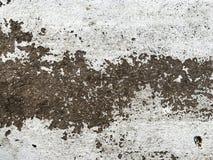 Texturas preto e branco do assoalho do cimento imagens de stock
