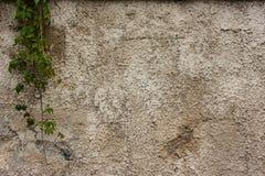 Texturas velhas da parede imagem de stock royalty free