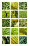 Texturas verdes Fotos de Stock Royalty Free