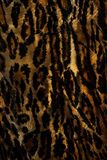 Texturbakgrund. Royaltyfri Fotografi