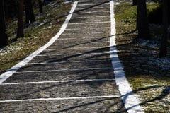 texturbakgrund av den kullersten stenlade gatan Royaltyfria Foton