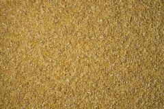 Texture écrasée de fond de gruaux de blé photographie stock