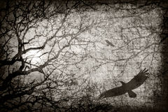 Texture. With branches and birds stock photography