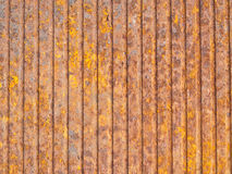 Texture royalty free stock images