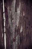 Texture. Natural old grunge wooden background stock photo image royalty free stock image