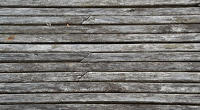 The texture Stock Photography