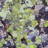 Texture. Image of texture with colorful mineral Royalty Free Stock Images