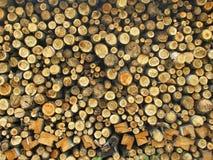 Texture Stock Photo