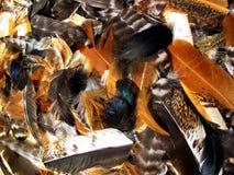 Texture....5 Stock Photo