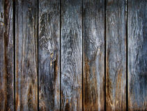 Texture. Of an old wall Royalty Free Stock Images