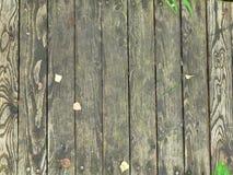 Texture. photographie stock libre de droits