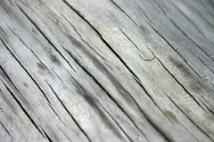 Texture. Wooden texture stock images