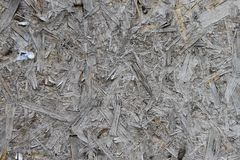 Texture of aт old wood particle board. As a background royalty free stock photo