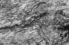 Texture abstraite noire et blanche de texture de pierre de mer Image stock