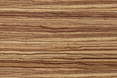 Texture African Zebrano Stock Images