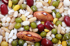 Texture of  All kind beans and legumes Royalty Free Stock Image