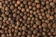 Allspice spice as a background, natural seasoning texture. Texture of allspice close-up, spice or seasoning as background royalty free stock photo