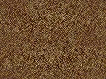 Texture animale de fourrure - léopard Image libre de droits