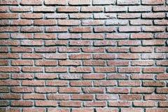 Texture antique de mur de briques photos libres de droits