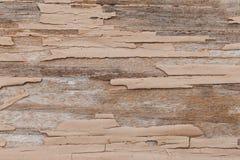 Texture arbre peint en peinture Au fil du temps, la peinture ?pluch?e  ayez la tonalit? photo libre de droits