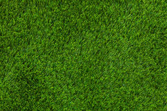 Texture artificial grass Royalty Free Stock Image