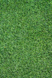 Texture of artificial grass ground Stock Images
