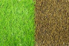 Texture artificielle d'herbe Photos stock
