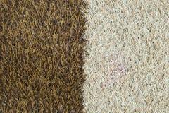 Texture artificielle d'herbe Images libres de droits
