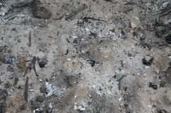 Ash from burnt wood on the ground background stock image