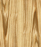 Texture of ash tree Stock Photography