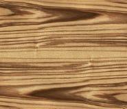 Texture of ash tree Stock Photo