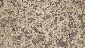 Texture au sol Photo stock