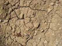 Texture au sol criquée Photo stock