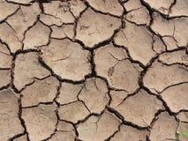 Texture au sol sèche Photos libres de droits