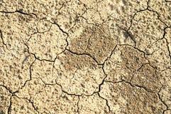 Texture au sol sèche Photographie stock libre de droits