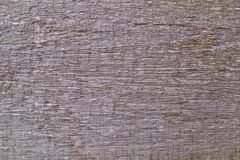 Texture 8425 Austria - wood Royalty Free Stock Images
