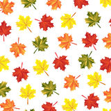 Texture autumn maple leaves. On white background illustration Royalty Free Illustration