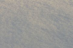 Texture autumn snow in the city. Close-up. Russia royalty free stock photography