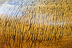 Texture background of ancient pottery shard Royalty Free Stock Images