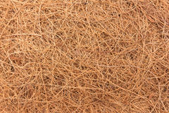 Texture, background of brown straw is bird nest. The texture, background of brown straw is bird nest Stock Photos