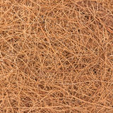 The texture, background of brown straw is bird nest. Texture, background of brown straw is bird nest stock photography