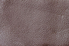 Texture of background for a designer, pattern of genuine leather surface. For background , backdrop, substrate Royalty Free Stock Photography