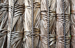 Texture background of dried coconut leaves Royalty Free Stock Images