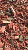 Texture background of fine red color wood chips. royalty free stock photos
