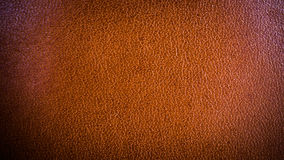 Texture background from fine skin brown luxury leather. With copy space Royalty Free Stock Image