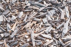 Texture of fine wood chips royalty free stock photo