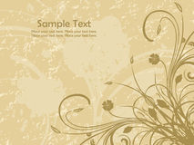 Texture background with floral pattern Royalty Free Stock Photos