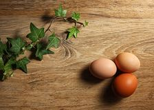 Texture background with green ivy and eggs stock photography