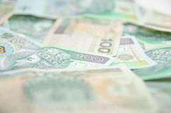 Texture background made of polish banknotes Stock Image