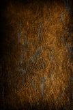 Texture background - old vintage stained leather Royalty Free Stock Photo
